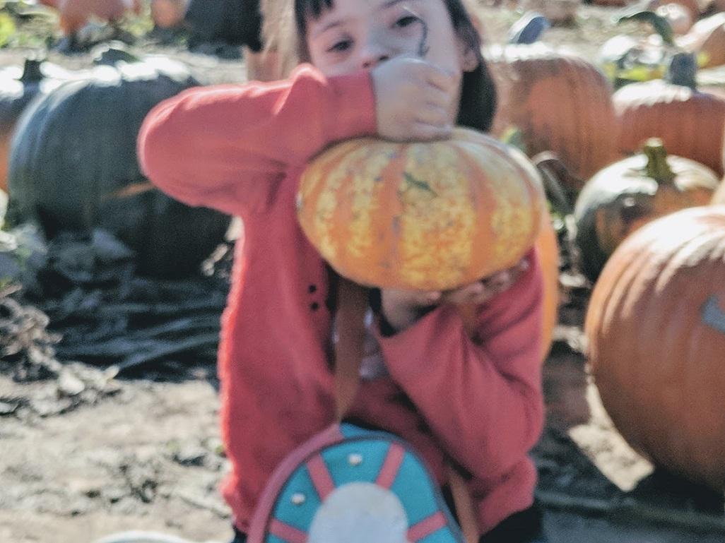Zoha with her pumkin